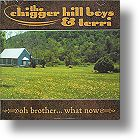 """Chigger Hill Boys & Terri, """"Oh Brother...What Now"""""""