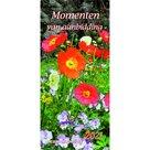 Momenten van aanbidding 2021 kalender - Fatzer | mcms.nl