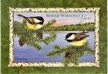 WENSKAART-Birthday-Gods-serenity-(prijs-set-van-4)