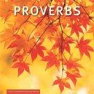 Proverbs - wandkalender large | mcms.nl