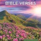 Bible Verses - 2022 Standaard wandkalender large 30x30cm | mcms.nl