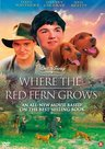 WHERE-THE-RED-FERN-GROWS- -Familiefilm