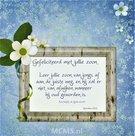 Gefeliciteerd met jullie zoon - enkele kaart met bijbeltekst