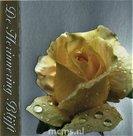 De Herinnering Blijft - condoleancekaart