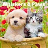 Whiskers & Paws - Wandkalender 2020 Large
