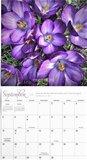 Garden of Grace - wandkalender 2021 | mcms.nl