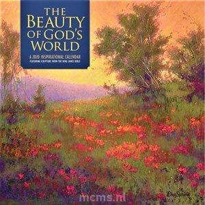 Kalender 2020 - The Beauty of God's World