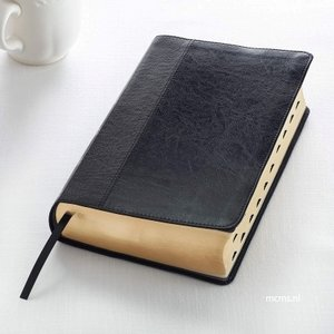 Bijbel King James Version (KJV) Print Standard   mcms.nl