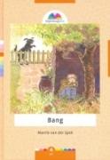 """""""Bang"""" MCMS.nl"""