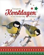Kerstwenskaart | mcms.nl